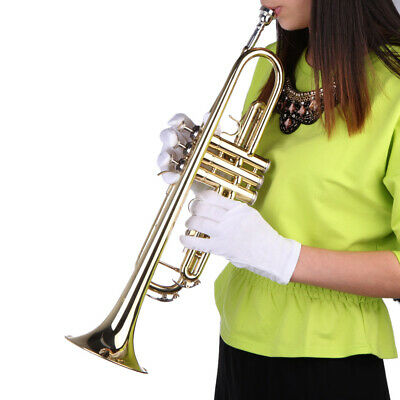 Trumpet Bb B Flat Brass Gold with Mouthpiece Strap Gloves Case for Beginner NEW