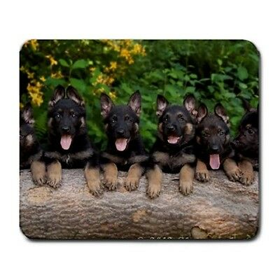 Cute German Shepherd Puppies Puppy Dogs Animal - Large Mousepad Mouse Pad