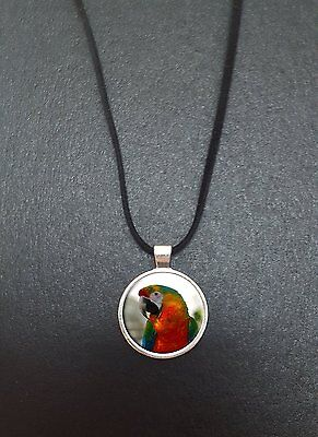 """Parrot Pendant On a 18"""" Black Cord Necklace Ideal Birthday Gift N59"""