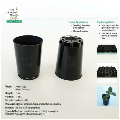50mm Round Propagation tube pot | for seed & seedling | cutting propagation.