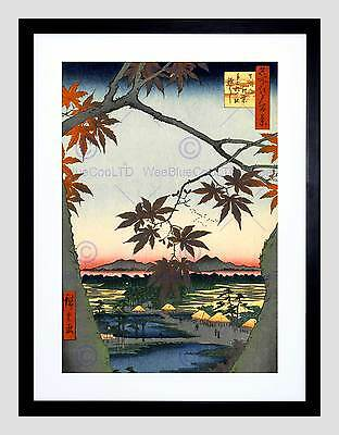 Painting Japanese Woodblock Maple Tree Mountains Framed Art Print B12X10832