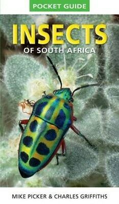 Pocket Guide to Insects of South Africa 9781775841951 by Mike Picker, Paperback