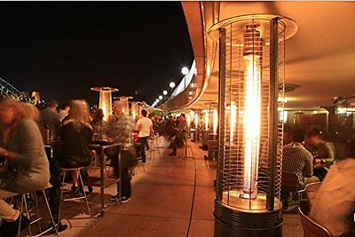 Outdoor Gas Heater Patio Black Tall Real Flame Steel & Glass Hose Regulator 15kW