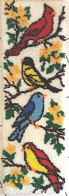 COMPLETED Latch Hook Bird Rug Wall Hanging Shag 47 X 16 inches Colorful Birds
