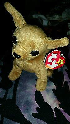 ty beanie babiesTiny the dog September 8 th 1998