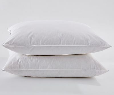 Puredown White Goose Feather and Down Pillow Standard Set of 2