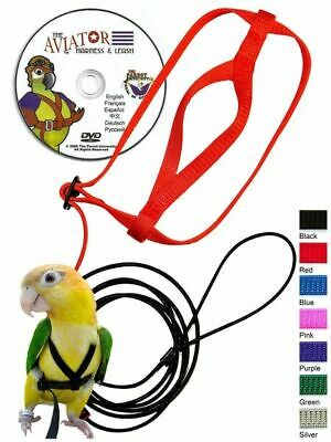 The AVIATOR Bird Harness & Leash (w/ DVD)