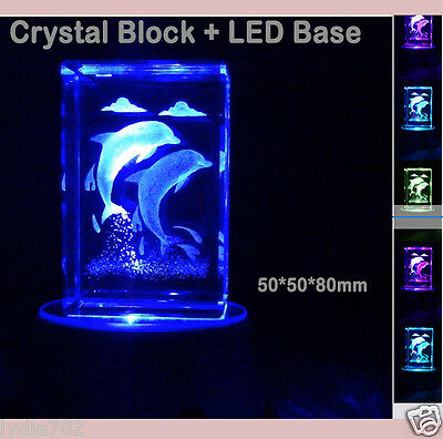 3D Dolphin Laser Engraved Crystal Free LED Lights Base Birthday Christmas Gift