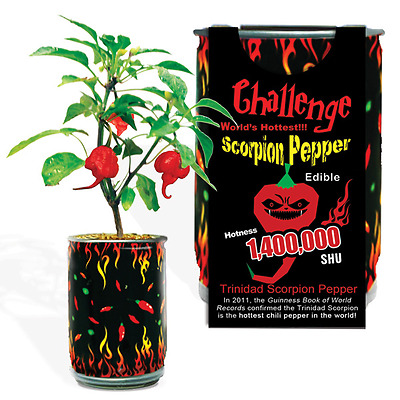 Trinidad Scorpion Pepper Growing Kit Can Hottest Pepper 1.4 Million Shu