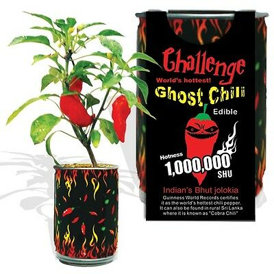 Ghost Chili - Bhut Jolokia Pepper Growing Kit Can Hottest Pepper 1 Million Shu