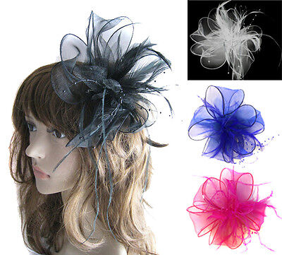 Ladies Feather Hair Wedding Fascinator Clip Races Bridal Hair Accessory Ascot