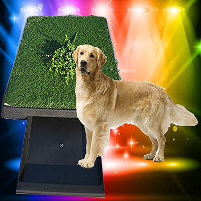 Indoor Dog Pet Potty Training Toilet Pad Grass Surface Pet Park Mat Best Price
