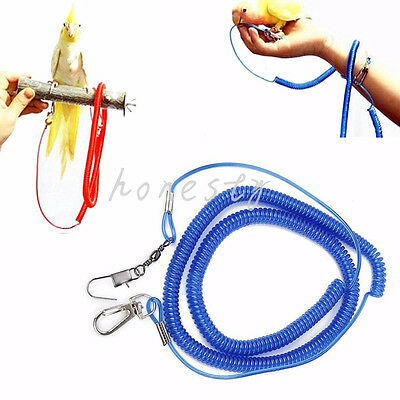 HOT 20Ft Parrot Bird Lead Leash Kits Flying Training Rope for Cockatiel 3m~7m
