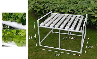 Hydroponic Site Grow Kit Ebb and Flow Deep Water Culture Garden Canada 72 Holes