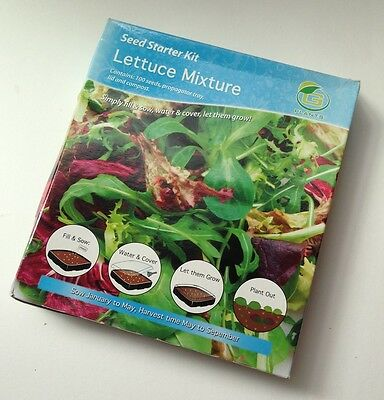 Lettuce Mixture Seed Starter Kit Grow Your Own