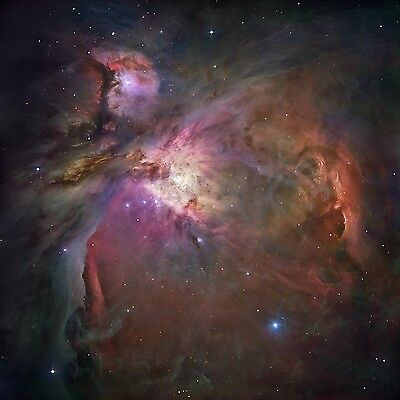ORION NEBULA NASA Hubble Telescope Deep Space Rolled CANVAS PRINT 24x24 in.