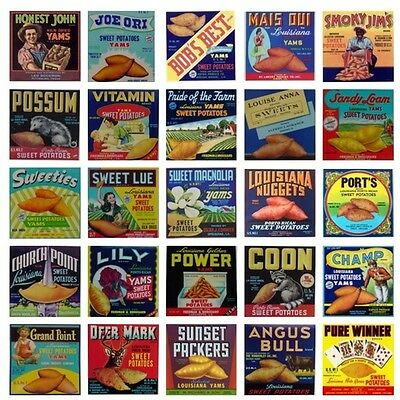 Lot Of 25 Vintage Sweet Potato Yam Crate Labels- Kitchen Decor Set Graphic Art