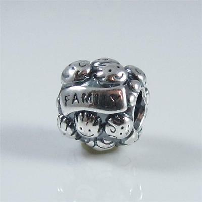 Authentic Genuine Pandora Silver Family Charm 791039