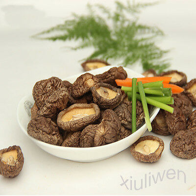 500g 17oz  Dried Pure Nature Chinese Large Shiitake Mushroom 4-6cm size