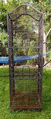 Antique Wrought Iron Victorian Life Size Bird Cage c1870's ~ Local Pick-Up Only!