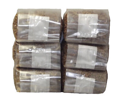 Sterilized Rye Berry Mushroom Substrate (six one pound bags)