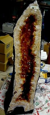 BEAUTIFUL 31.8 kg; 30 INCH BRAZILIAN  CITRINE CRYSTAL CATHEDRAL CLUSTER GEODE!!