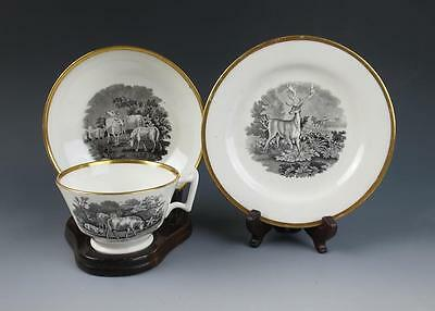 Early English RIDGWAY BAT PRINT PLATE CUP SAUCER Porcelain Antique Staffordshire