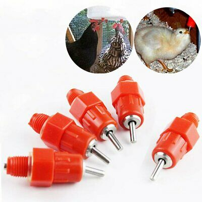 10~30 Pcs Chicken Hen Duck Poultry Nipples Waterer Drinker Feeder Hanging New
