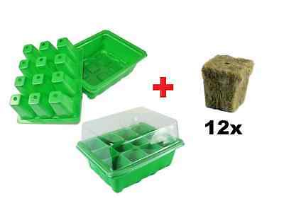 Humidity Cloning Tray Propagation Dome For Plants/Seeds + 12 Rockwool Cubes