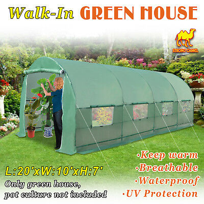 Larger Hot Green House 20'X10'X7' Walk-In Greenhouse Outdoor Plant Gardening
