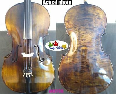 Strad style SONG Brand Maestro 1/4 cello ,huge and resonant sound #10892