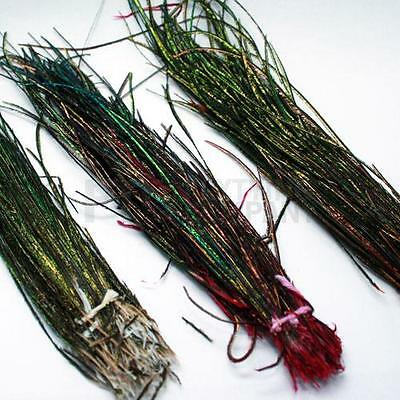 Hends Strung Peacock Herls | Fly Tying Materials | Choice of Colours