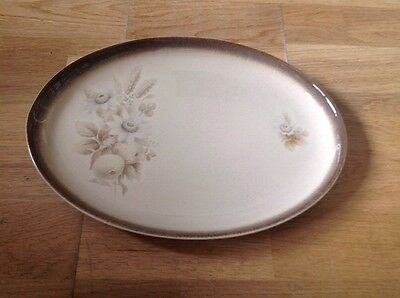 Denby Memories Pattern 1 Large Oval Serving Platter 12.5 by 9.25 Inches.