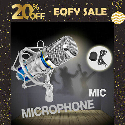 Professional Condenser Microphone Mic Sound Studio Recording Dynamic with Stand