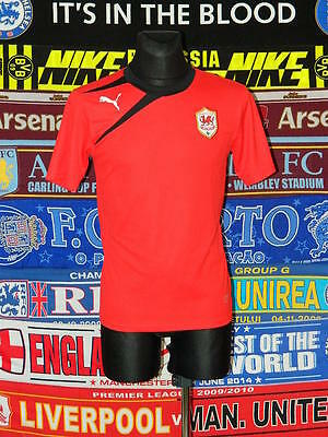 5/5 Cardiff City adults S football shirt jersey trikot soccer