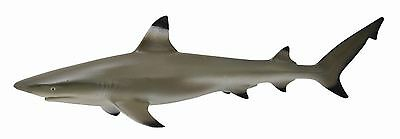 BLACKTIP REEF SHARK - Sealife Model by CollectA 88726 *New with Tag*