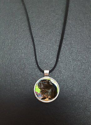 """Guinea Pig Pendant On a 18"""" Black Cord Necklace Ideal Birthday Gift N409"""