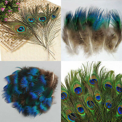 Hot 10/50pcs Natural Artificial Peacock Tail Eyes Feathers 8-12''/1-3'' DIY Deor