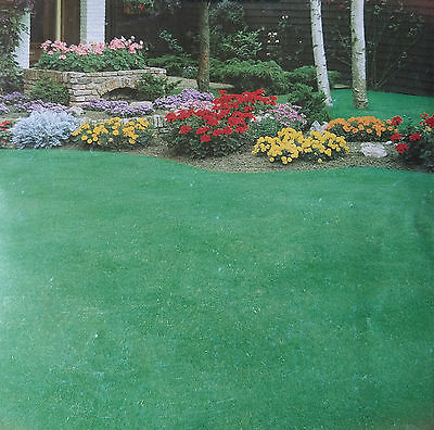 10g LAWN GRASS MIXTURE seeds, rich, smooth dark green grass, lasts many years