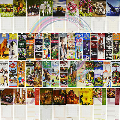 2017 Slim Square Spiral Bound Calendar Month to View Choice of Design New Year