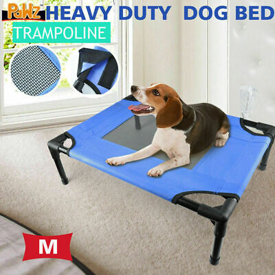 Pet Dog Bed Heavy Duty Trampoline Hammock Canvas Cat Puppy Cover Medium Size New