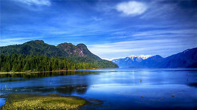 Lake Forest Mountains Nature Full Wall Mural Photo Wallpaper Print Home 3D Decal