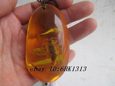2.91 inch/Chinese natural amber scorpion necklace pendant