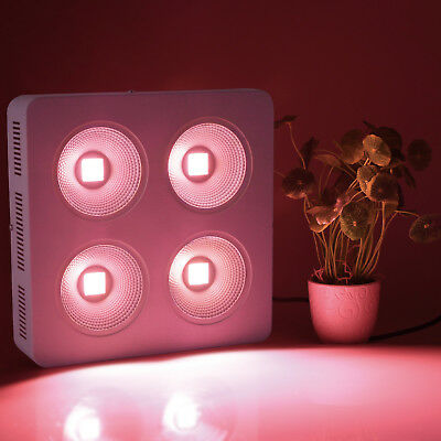 PopularGrow COB 800W LED Grow Light  Full Spectrum for Indoor Commercial Plant