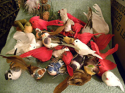 HUGE Lot of 32 Vintage Real Feather Decorative Birds-Dove-Cardinal-MORE-EB14