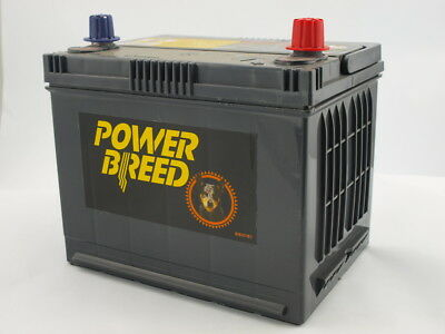 Holden Commodore Car Battery Acc,Eq,VT,VX,VY,VZ,Crew,SS 1998-2006 EB50LMF 12 mon