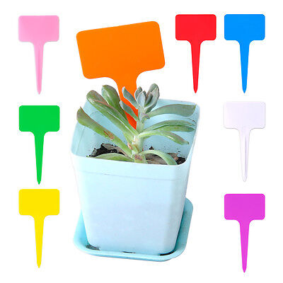 100x Plastic T-Type Tags Plant Labels Shrub Tree Seed Markers Nursery Garden Pot