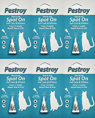6 Months Pestrroy Flea and Tic treatment for Cats & Kittens For The Price of 6