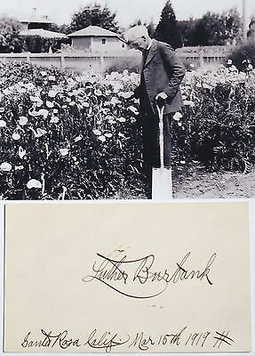 Luther Burbank Prominent Botanist & Agricultural Pioneer Autograph ''Rare''