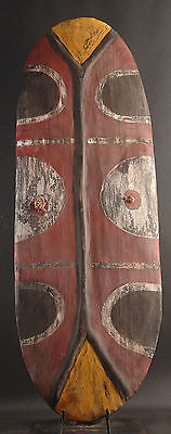 Shield From Southern Highlands Of Papua New Guinea With Bold Colors